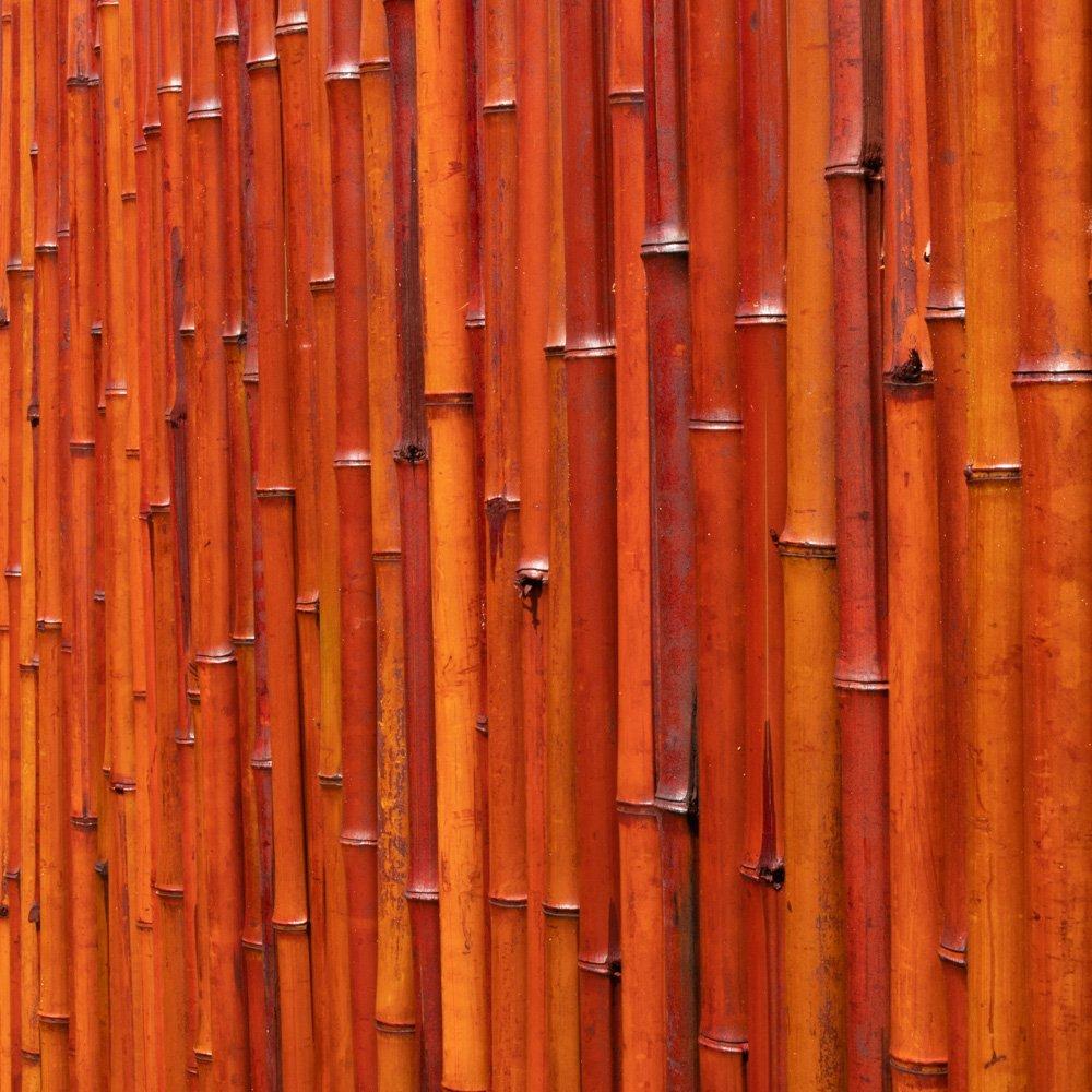 Sichtschutz Aus Bambusmatte - 1,8m x 1,9m - Rot, Papillon™