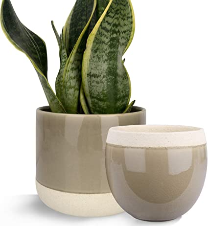 Amazon Com Ceramic Flower Plant Pots 6 5 4 9 Inch Indoor Planters Plant Containers With Cracked Glass Detailing Taupe Garden Outdoor