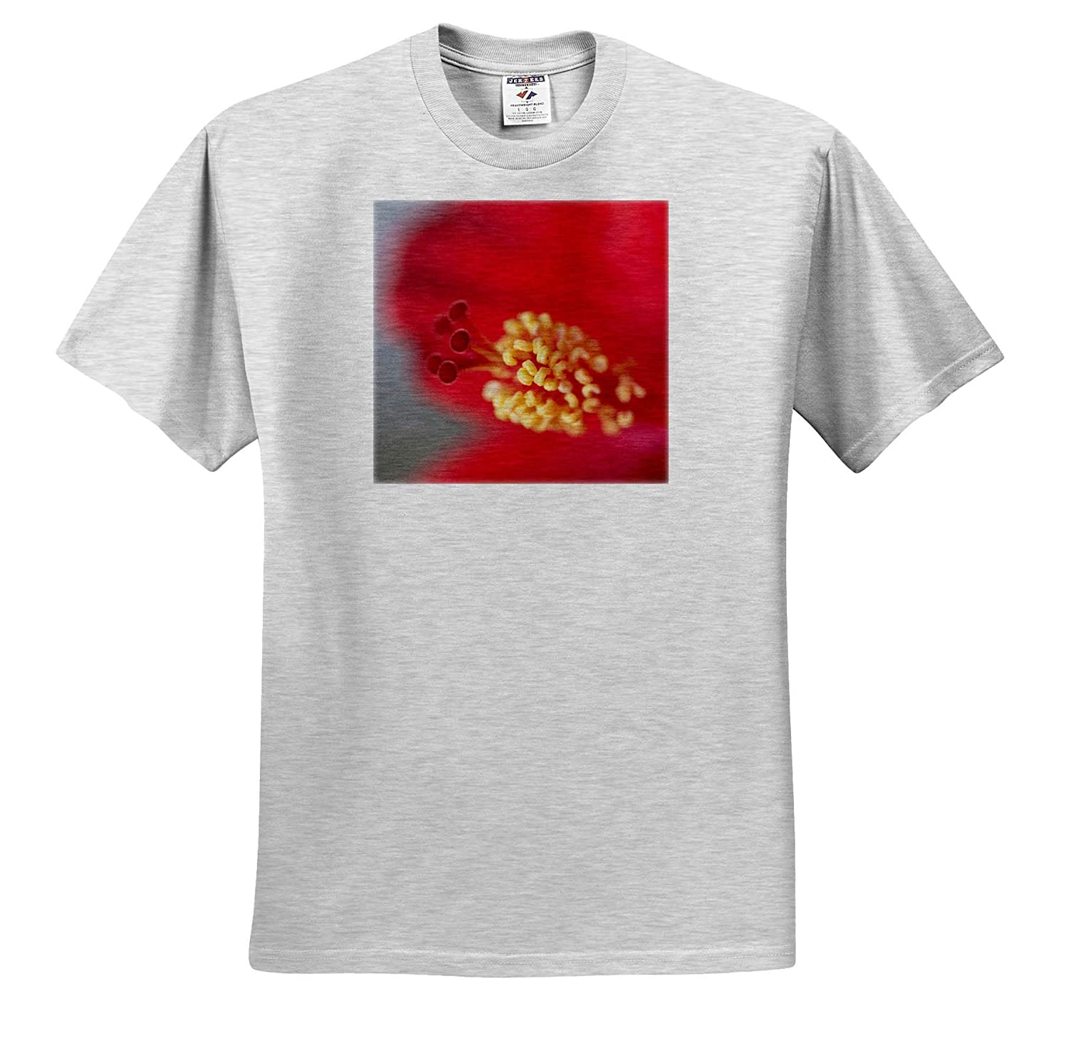 ts/_314773 Adult T-Shirt XL Flowers Close-up of red Hibiscus Flowering 3dRose Danita Delimont