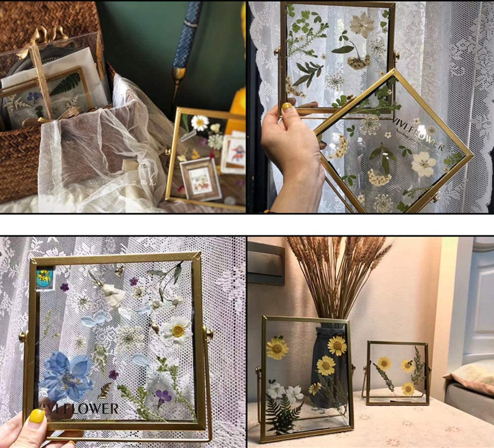 106 Pieces Assorted Real Dried Pressed Flowers Combination Real Dried Pressed Leaves Combination Natural Dry Flowers Leaves for Pressed Leaf Art Craft DIY Resin Art Embellishment Decorations