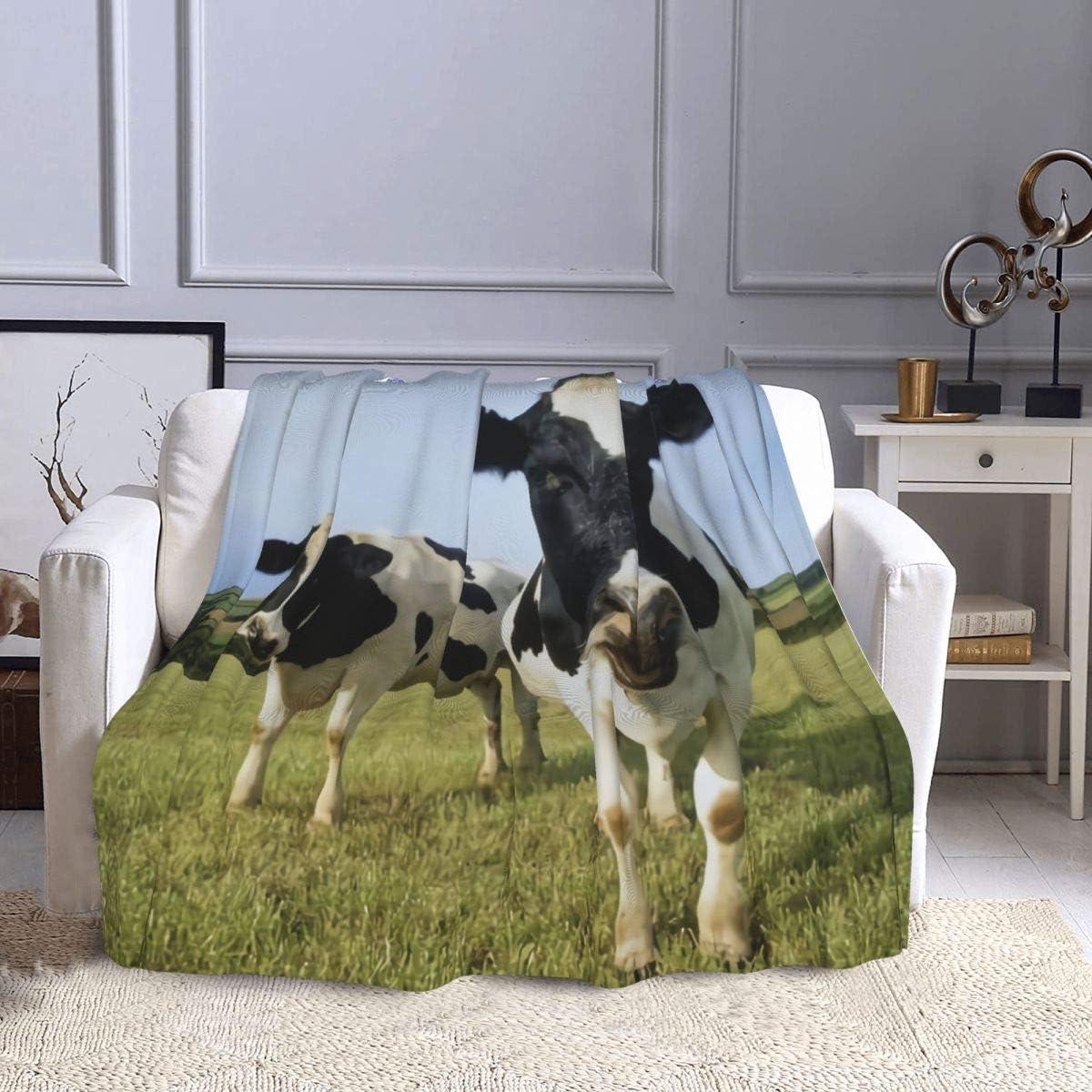 Manta de forro polar con dos vacas Holstein de pie en la hierba, manta de felpa ultra suave y cálida para sofá, cama, sofá, oficina y sala de estar, 127 x 152 cm