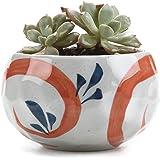 T4U 11CM Stile Giapponese Clay Serial Ceramica Vaso di Fiori Pianta Succulente Cactus Vaso di Fiori giardino i vasi di fiori vasi di piante.