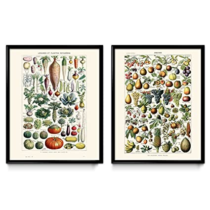 Amazon Com Vegetables And Fruit Vintage Print Set Of 2 Kitchen
