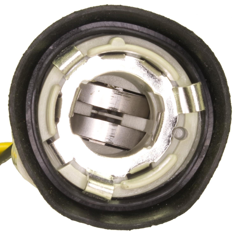 WVE by NTK 6S1009 Back Up Light Socket