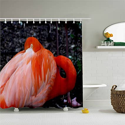 Image Unavailable. Image Not Available For. Color: Flamingos Shower Curtain  Hooks ...
