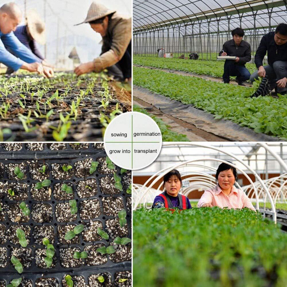   Nursery Trays & Lids   Top Quality 50Holes Plastic Cells Seedling Starter Trays Plant Flower Pots Nursery Grow Box Tray Plug Planting Planter Container   by HUNACA by HUNACA