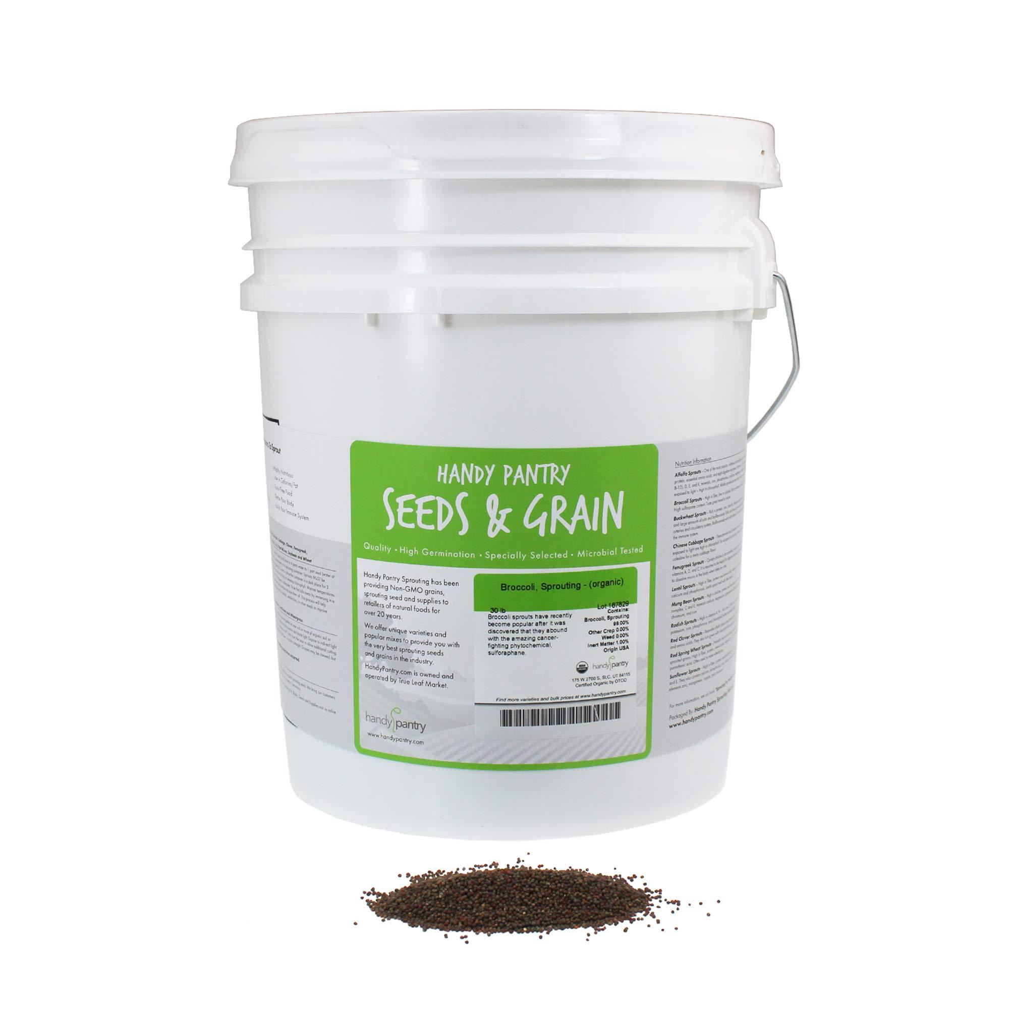 Organic Broccoli Sprouting Seeds by Handy Pantry   30 Pound Reusable Bucket   Bulk Non-GMO Broccoli Sprouts Seeds, Contain Sulforaphane