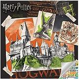 2019 Harry Potter Wall Calendar Trends International 0057668895684