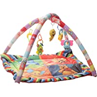 Archana Nhr Happy Play Gym (Multicolor)