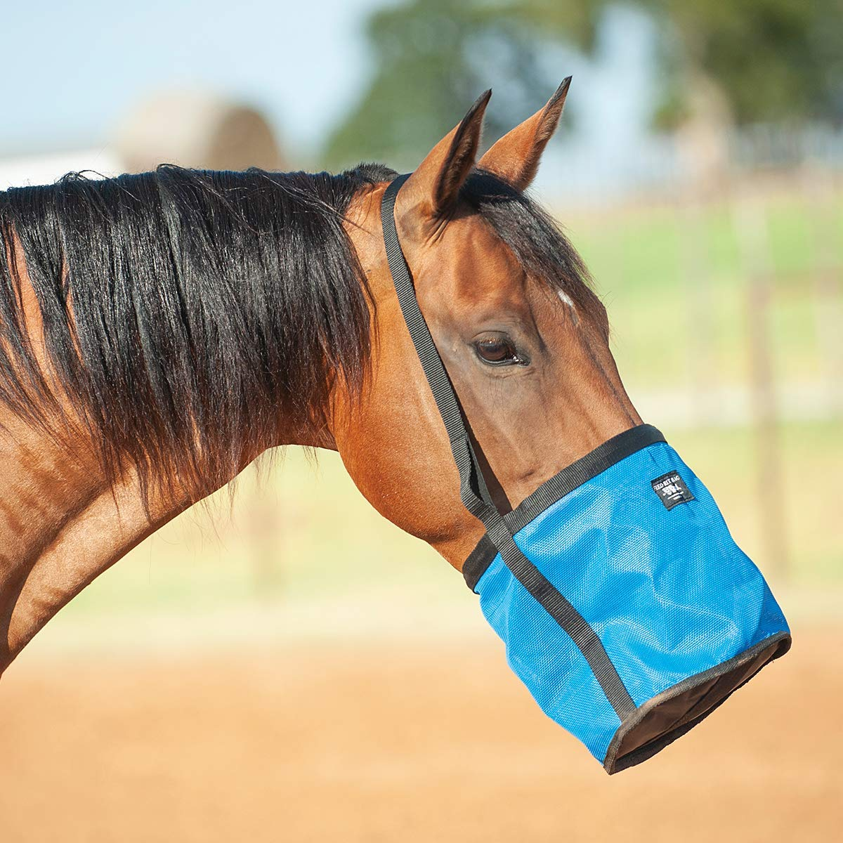 Cashel Feed Rite Bag Draft, Horse, Mini/Foal, or Pony Colors: Black, Blue, Orange or Pink by Cashel