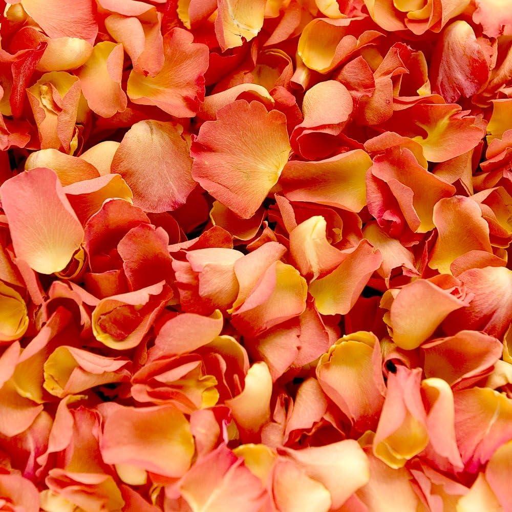 Confeti de pétalos de rosa biodegradable para bodas (Naranja, 2 ...