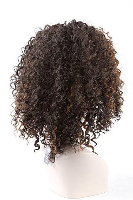 Amazon.com: Cool2day New Fashion Charming African American Hair Wigs Short Kinky Curly Capless Synthetic Hair Wig For Black Women Hot: Beauty