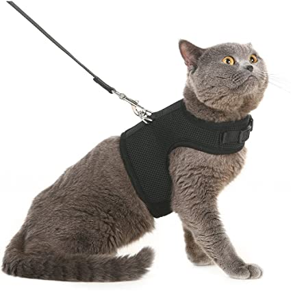 Pet Supplies Escape Proof Cat Harness With Leash Holster Style