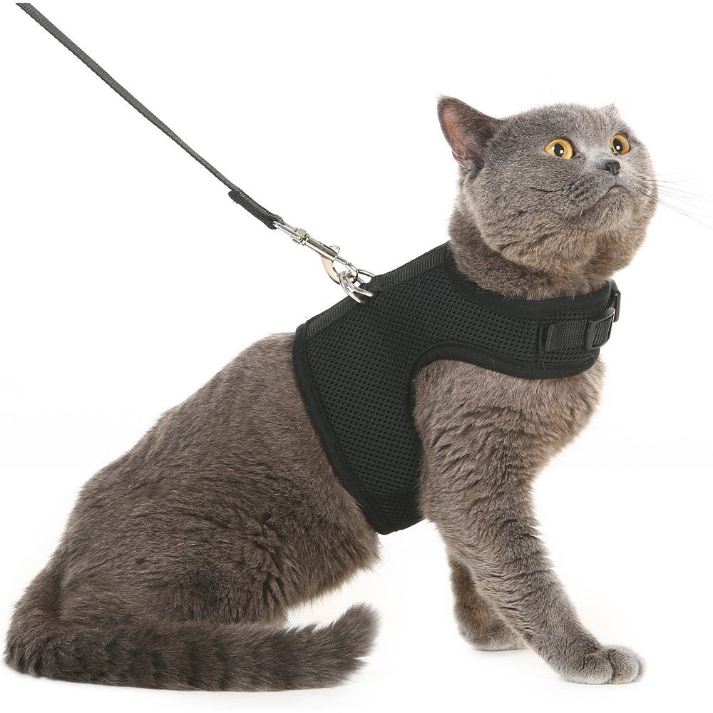 Escape Proof Cat Harness with Leash - Holster Style Adjustable Soft Mesh - Best for Walking Black Large