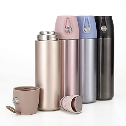 500ml 3 en 1 infusor de té Botella con Doble Pared Cristal, Ideal para bebidas hojas sueltas Tés, Ice té o infusionadora fruta en el agua