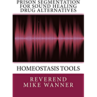 Prison Segmentation For Sound Healing Drug Alternatives: Homeostasis Tools (English Edition)