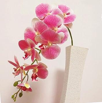 Amazon Com Jiumengya 5pcs Pu Orchids 3d Printing Effect Orchid