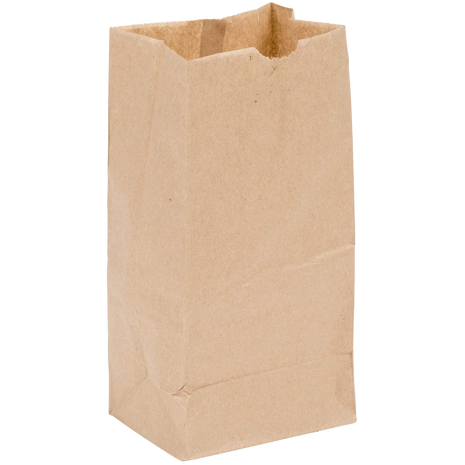 4lb Brown Paper Lunch Bags - Pack of 100ct