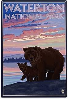 product image for Lantern Press Waterton National Park, Canada, Bear and Cub (12x18 Aluminum Wall Sign, Wall Decor Ready to Hang)