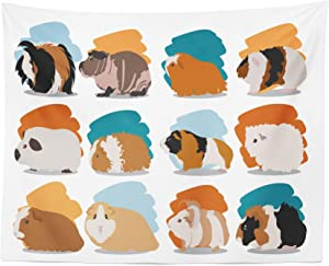 """Lunarable Guinea Pig Tapestry, Minimalist Illustration Types of Pet Rodents Soft Pastel Coloring Brush Strokes, Fabric Wall Hanging Decor for Bedroom Living Room Dorm, 28"""" X 23"""", Blue Orange"""