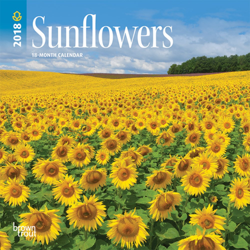 Sunflowers 2018 7 x 7 Inch Monthly Mini Wall Calendar, Flower Outdoor Plant (Multilingual Edition) (Multilingual) Calendar – Mini Calendar, Wall Calendar BrownTrout Publishers 1465089160 NON-CLASSIFIABLE
