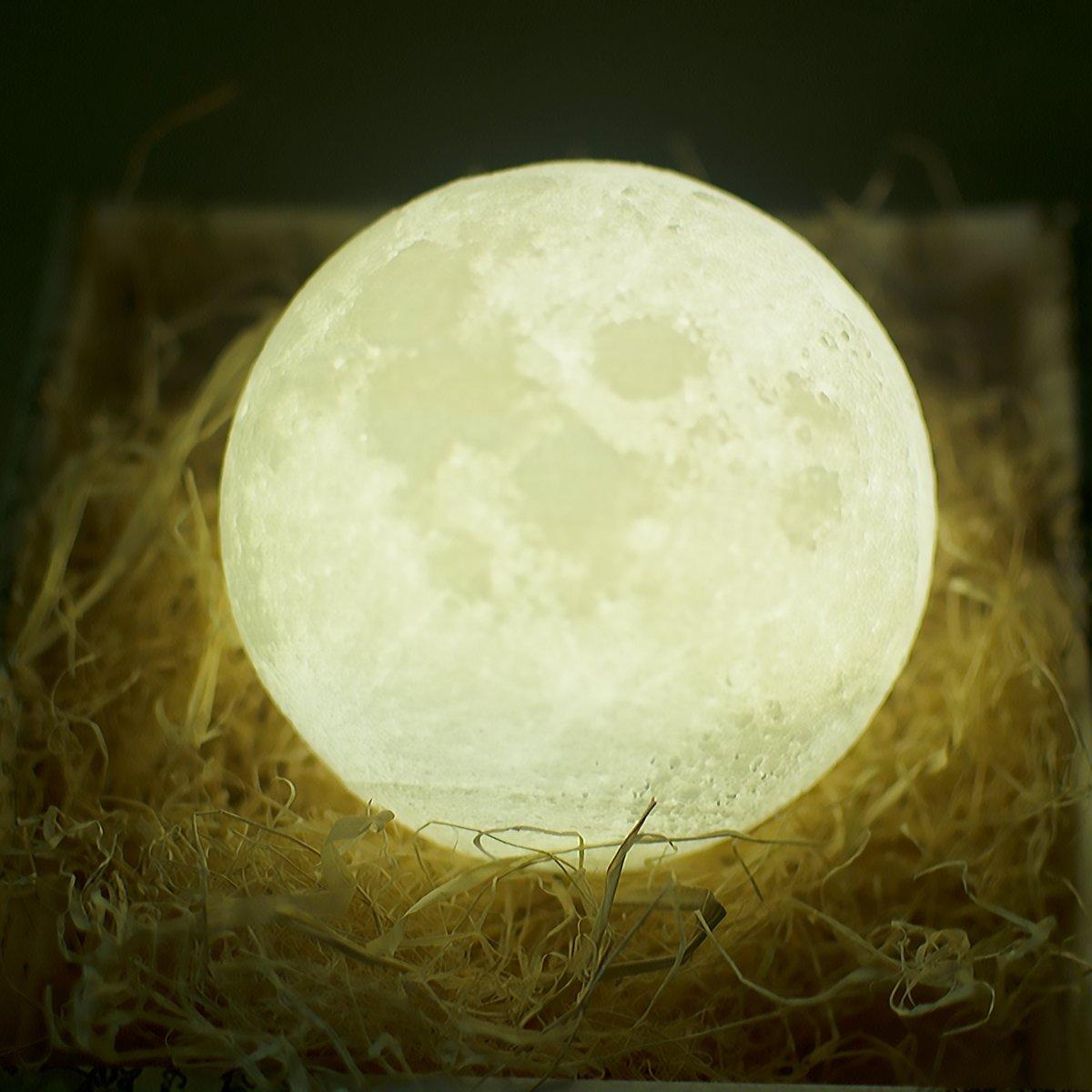 3D印刷ムーンナイトライトランプUSB Rechargerable月面充電チャージタッチスイッチ2色ムーンナイトランプの明るさ調節可能なテーブルライトホームインテリア (10cm) B073XM1183 10cm 10cm