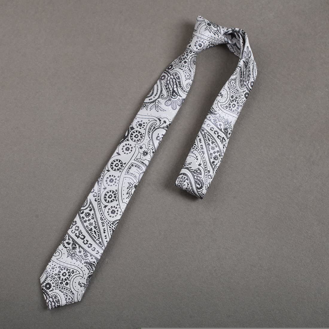 Dan Smith Mens Paisley Microfiber Skinny Tie Elegant For Dad Slim Necktie With Free Gift Box
