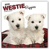 West Highland White Terrier Puppies 2018 Calendar
