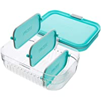 Packit Mod Lunch Bento Container, Mint, 72220