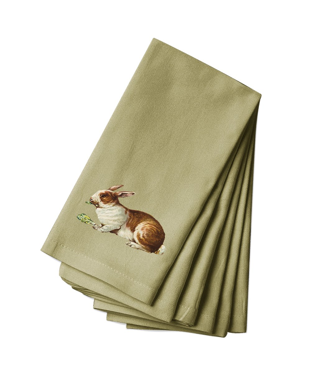 Style in Print Canvas Dinner Napkin Set Of 4 Bunny Eats Cabbage Pets Animals By