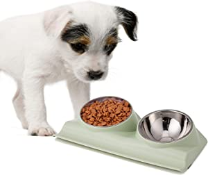 PETnSport Mess Free 15 Degree Slanted Bowl for Dogs and Cats Tilted Angle Bowl Pet Feeder - Non-Skid & Non-Spill, Easier to Reach Food