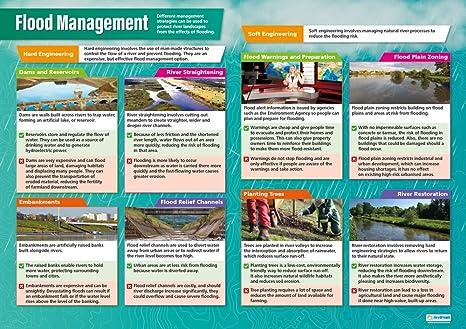 Amazon.com: Gestión de la Inundación Póster | Póster escuela ...