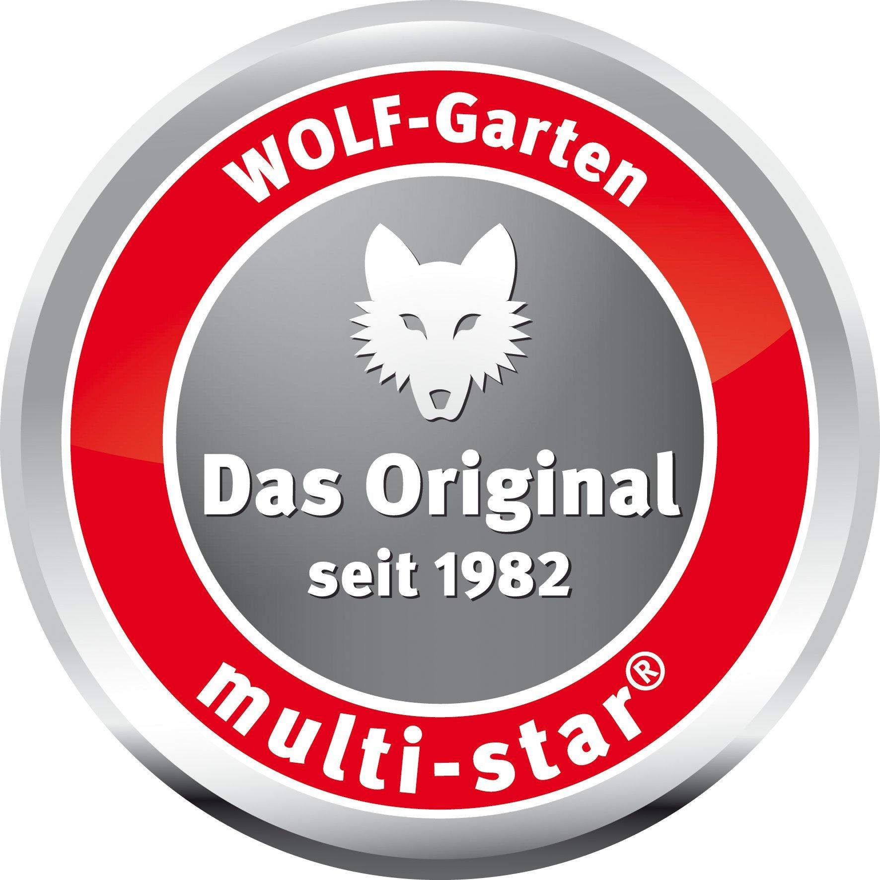 Wolf-Garten 3132000 Double Hoe IL-M 3''