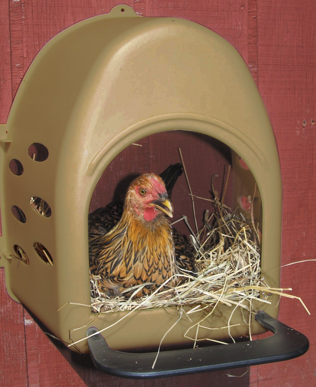 Farm Innovators Model 3800 Plastic Nesting Box by Farm Innovators