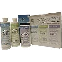 Wool Clean Carpet Spot Removal Kit