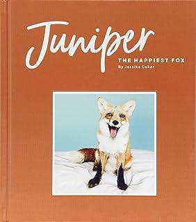Calendario Fox.Juniper The Happiest Fox 2019 Wall Calendar Jessika Coker