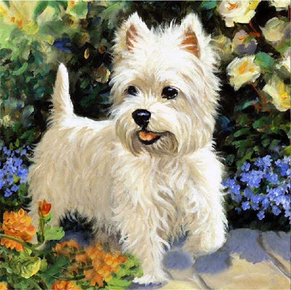 / White Llittle Dog 30/ * 30/  Yeesam Art New 5D Diamond Painting kit/  / DIY cristalli strass pittura incollato vernice di numero kit ricamo a punto croce