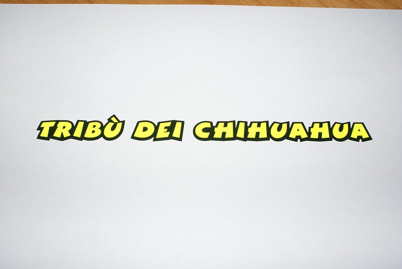 Rapro Graphics Valentino Rossi Elements Sticker 2012