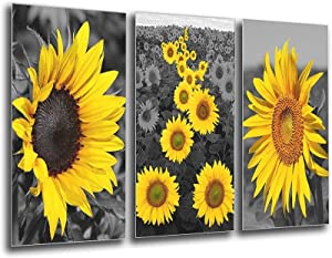 Sunflower Picture Painting Bathroom Decor - Black And White Daisy Yellow Canvas Rustic Wall Art Office Decorations Nature Flowers Pictures For Living Room Kitchen Bedroom Artwork Unframe-style1 20×30i
