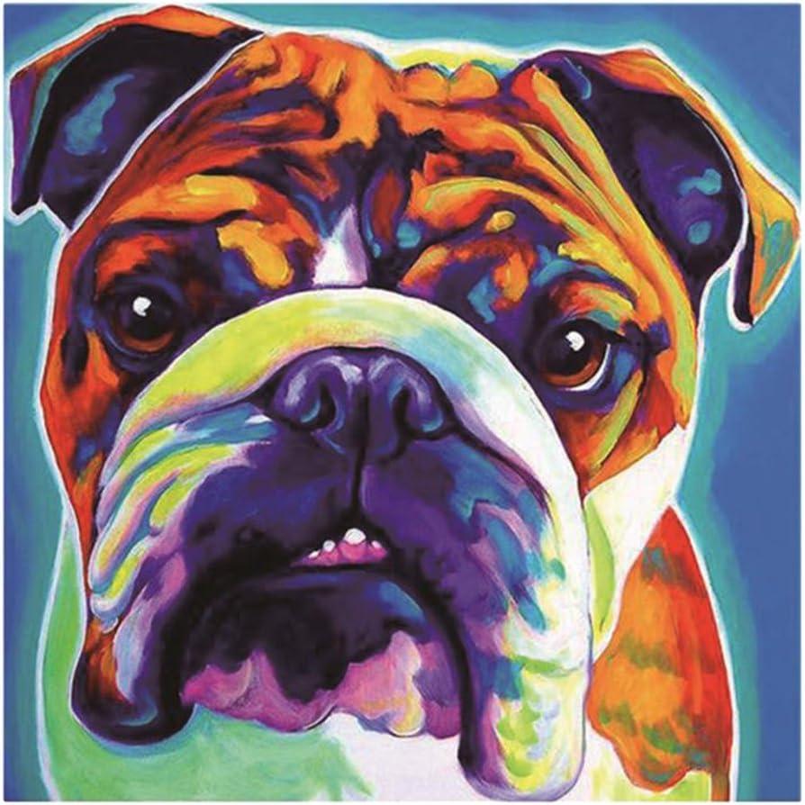 Bulldog dailymall Flower//Animal DIY Diamond Painting Rhinestone Embroidery Kit Mosaic Painting