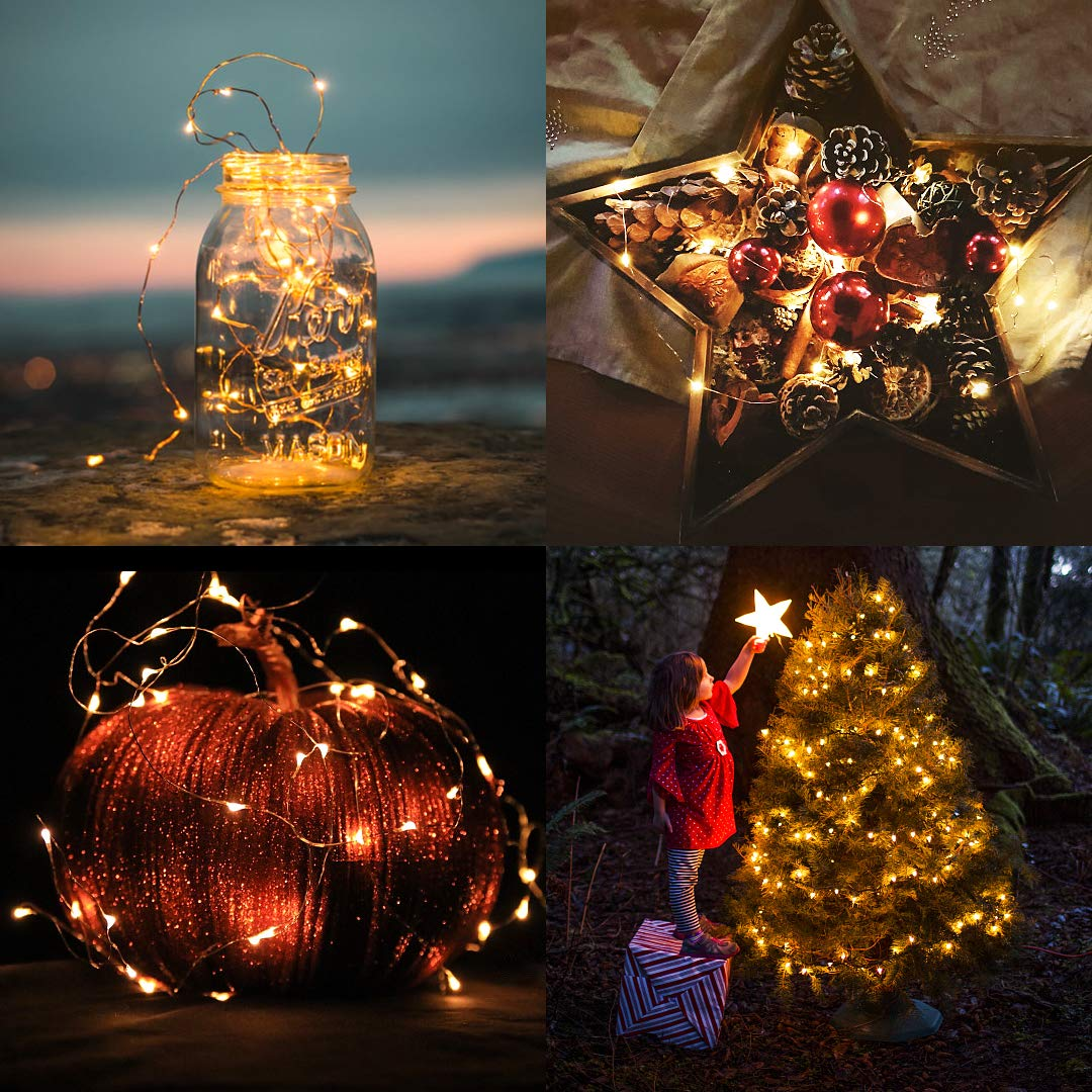 100 LED Starry Fairy Light, 33FT USB Decorative Light with Remote Timer Adapter, Waterpoorf String Light for Party, Holiday, Christmas, Garden, Weeding,Indoor and Outdoor Decation