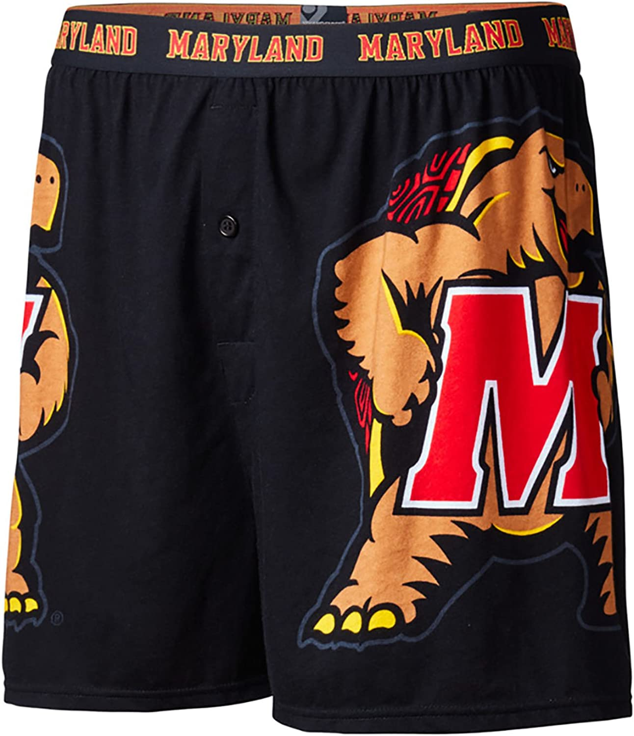 FANDEMICS NCAA Boys Large Logo Boxer Short
