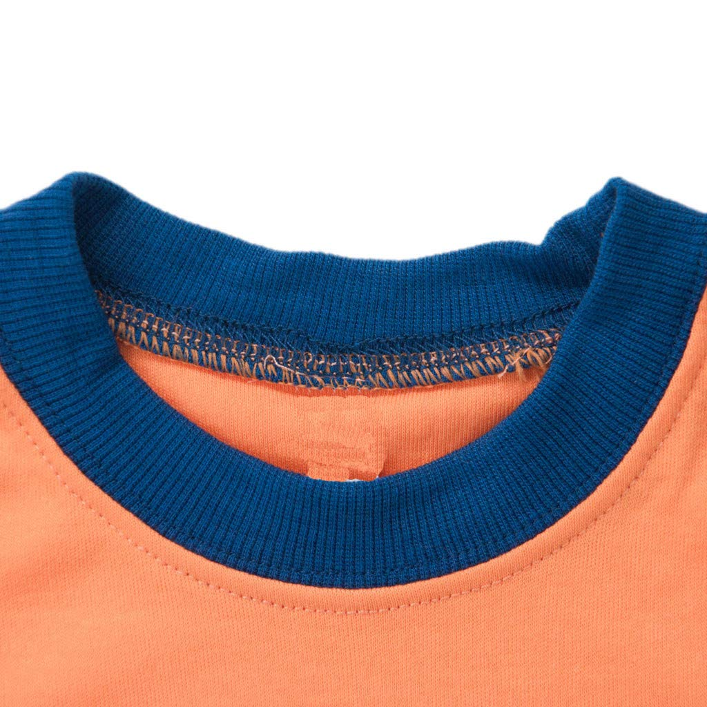 Geetobby Boys Cartoon Dinosaur Pajamas 100/% Cotton PJS Tops Pants Set for Kids