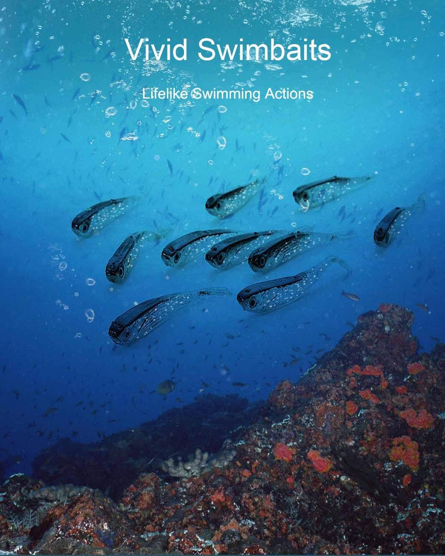 Beoccudo Fishing Lures Bass Bait, Soft Plastic Split Tail Lure Set -24pcs Jerk Minnow Swimbait : Sports & Outdoors
