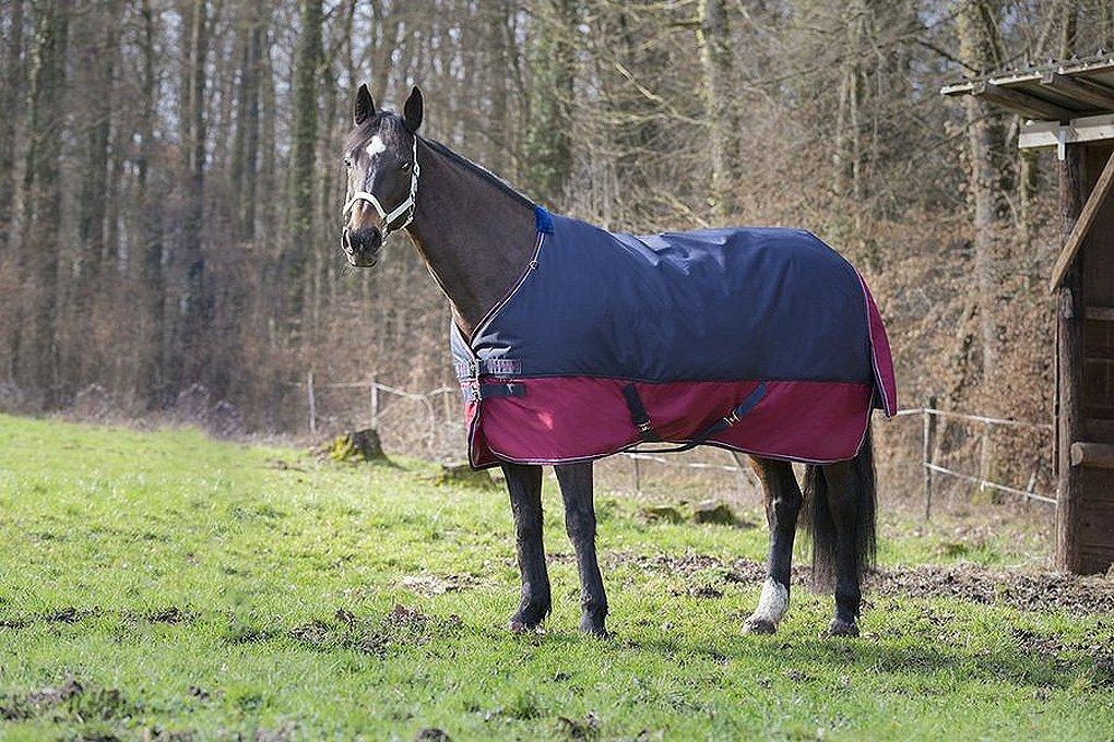 Amesbichler Outdoordecke TYREX 1200 D Equi-Theme 150g Fü llung 135 cm wasserdicht dunkelblau/weinrot mit Kreuzgurten | Pferdedecke Reitsport Amesbichler