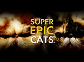 Super Epic Cats [OV]