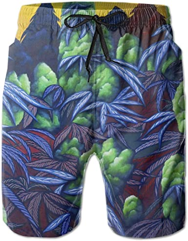 Men Swim Trunks Drawstring Elastic Waist Surf Beach Board Shorts NO Mesh Lining