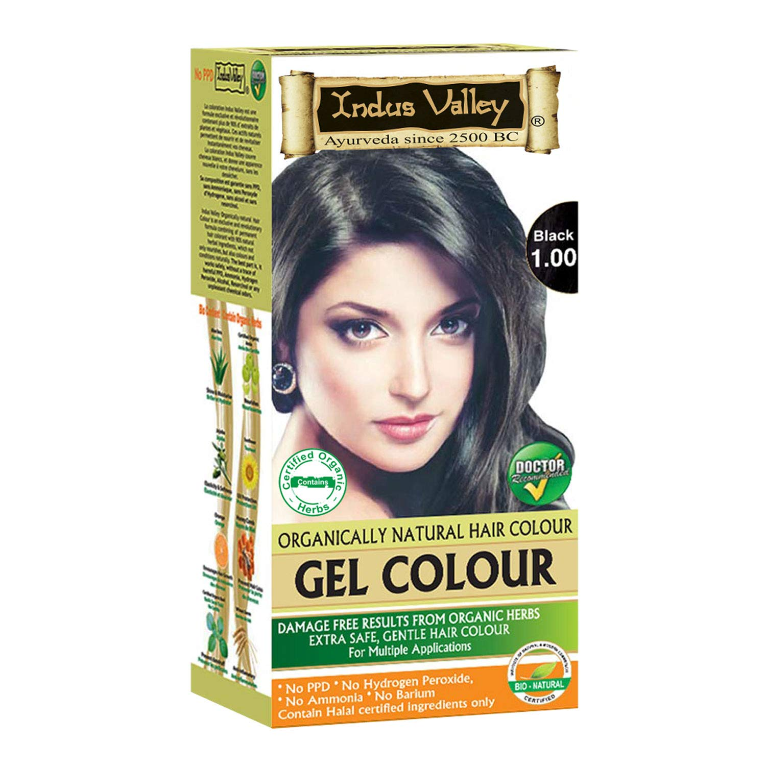 c63efdf71ecc3 Buy Indus Valley Natural Black Hair Colour- 1.0 Online at Low Prices in  India - Amazon.in