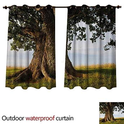 Amazon.com: WilliamsDecor Nature Outdoor Balcony Privacy ...