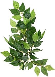 Exo Terra Silk Terrarium Plant, Small, Ficus